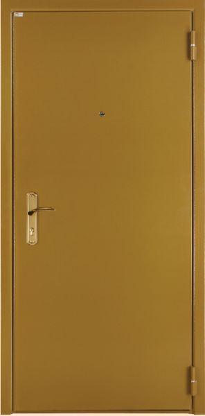 нестандартные двухстворчатые металлические двери в подъезде